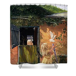 Summer Reflection Shower Curtain by Timothy  Easton