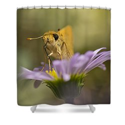 Summer Skipper Shower Curtain by Priya Ghose