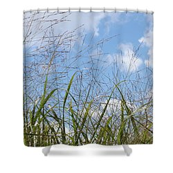 Summer Sky Shower Curtain