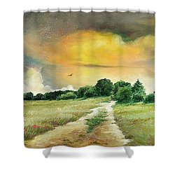 Shower Curtain featuring the painting Summer by Sorin Apostolescu
