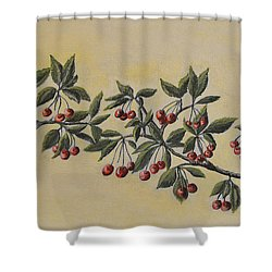 Summer Stay... Shower Curtain by Felicia Tica