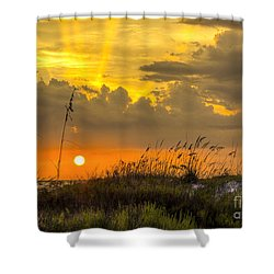 Summer Sun Shower Curtain by Marvin Spates