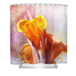 Summer Sunset Shower Curtain by Elaine Manley