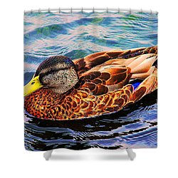 Shower Curtain featuring the photograph Summer Swim by Denyse Duhaime