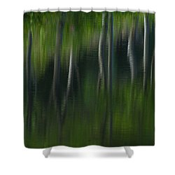 Summer Trees Shower Curtain by Karol Livote