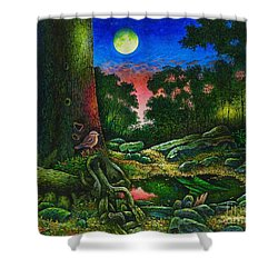 Summer Twilight In The Forest Shower Curtain