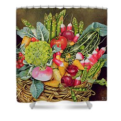 Summer Vegetables Shower Curtain by EB Watts