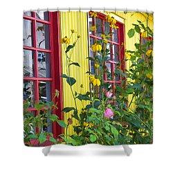 Summer Windows Shower Curtain