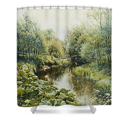 Summerday At The Stream Shower Curtain by Peder Monsted