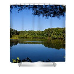 Summers Blue View Shower Curtain by Karol Livote