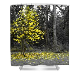 Shower Curtain featuring the photograph Summer's End by Marilyn Wilson
