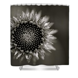 Summer's Promise Shower Curtain
