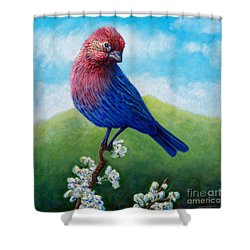 Summertime Shower Curtain by Brian  Commerford