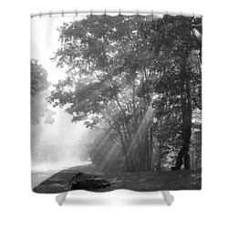 Sun Beams Shower Curtain by Todd Hostetter