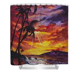 Shower Curtain featuring the painting Sun Burst by Darice Machel McGuire