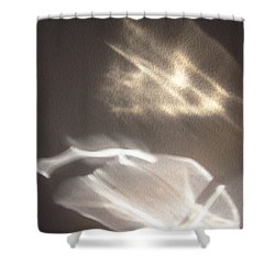 Shower Curtain featuring the photograph Sun Creatures by Mary Bedy