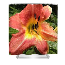 Sun Day Lilly  Shower Curtain