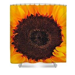 Sun Delight Shower Curtain