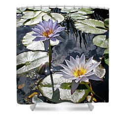 Sun-drenched Lily Pond         Shower Curtain
