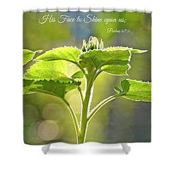 Sun Drenched Sunflower With Bible Verse Shower Curtain by Debbie Portwood