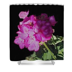 Sun Kissed Geranium  Shower Curtain by Christine Fournier