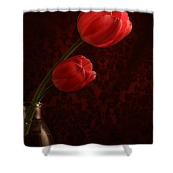 Sun Kissed Tulips Shower Curtain by Darren Fisher