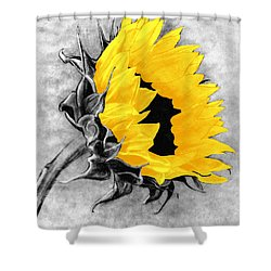 Sun Power Shower Curtain
