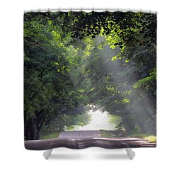 Sun Rays On Waters End Road Shower Curtain