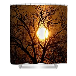 Sun Rise Sun Pillar Silhouette Shower Curtain