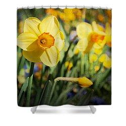 Sun Seeker Shower Curtain