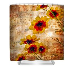Sun Seekers Shower Curtain by Debra and Dave Vanderlaan