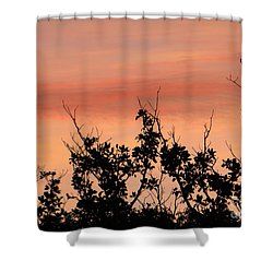 Sun Up Silhouette Shower Curtain