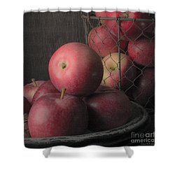 Sun Warmed Apples Still Life Square Shower Curtain by Edward Fielding