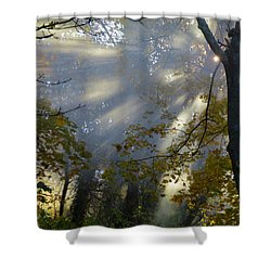 Shower Curtain featuring the photograph Sunbeam Morning by Dianne Cowen