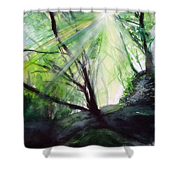Shower Curtain featuring the painting Sunbeans Of Grace by Allison Ashton