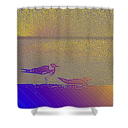 Sunbird Shower Curtain
