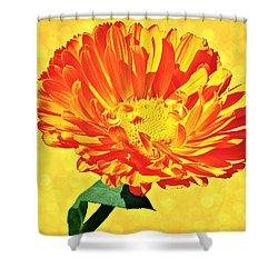 Sunburst Shower Curtain by Elizabeth Winter