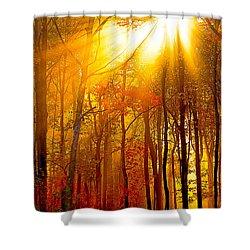 Sunburst In The Forest Shower Curtain