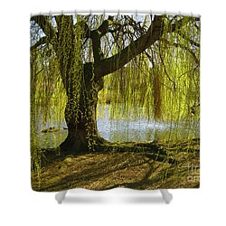 Sunday In The Park Shower Curtain