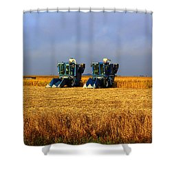Shower Curtain featuring the photograph Sunday Morning by Viviana  Nadowski