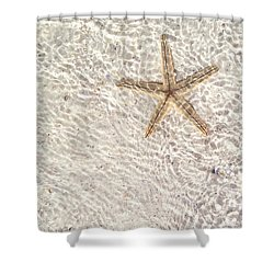 Anna Maria Island Starfish Shower Curtain