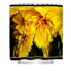 Sunflower Abstract 1 Shower Curtain by Rose Santuci-Sofranko