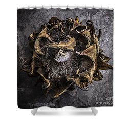 Sunflower Abstract Square Shower Curtain by Edward Fielding
