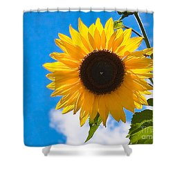 Sunflower And Bee At Work Shower Curtain