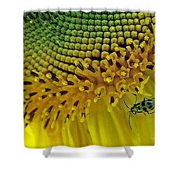 Sunflower And Beetle Shower Curtain