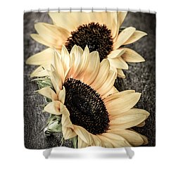 Sunflower Blossoms Shower Curtain by Elena Elisseeva