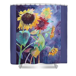 Shower Curtain featuring the painting Sunflower Color by Nancy Jolley