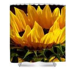 Sunflower Crown Shower Curtain by Deborah  Crew-Johnson
