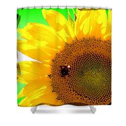 Shower Curtain featuring the digital art Sunflower by Daniel Janda
