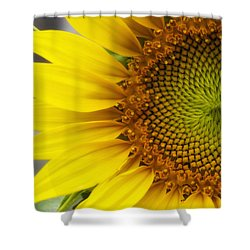 Sunflower Face Shower Curtain